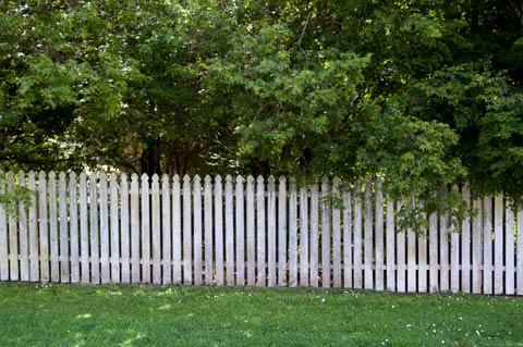 Fence, Tikorangi Road, Taranaki