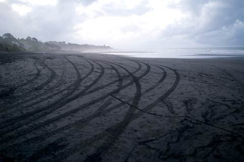 Quad bike tracks Oakura Beach Taranaki