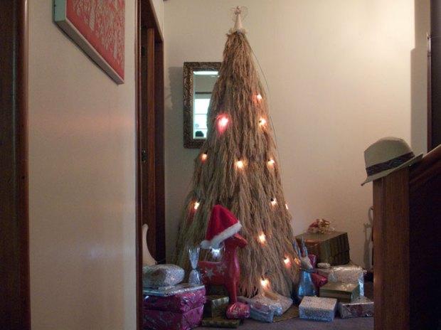 Christmas Tree, Tikorangi, Taranaki, New Zealand