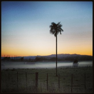 Michael Jeans instagram 2013