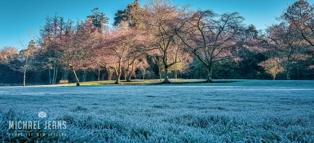 Te Kō Utu Park Cambridge Domain Waikato New Zealand