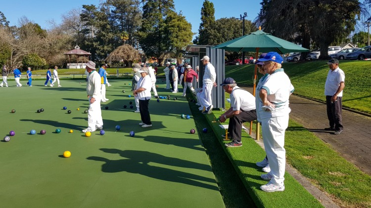 Bowling green, Cambridge Domain, Waikato, New Zealand.